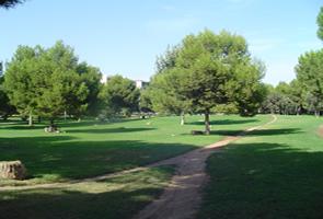 Jardín de Turia