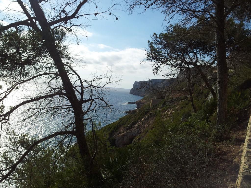 Les chemins de randonnées passent parfois à raz de falaise et offre une vue magique.