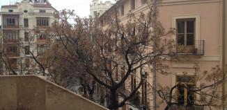 """photo du quartier de l'entrée du quartier du Carmen depuis les tours """"Torres de Serranos"""""""